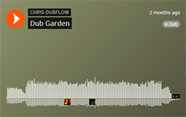 CHRIS DUBFLOW - DUB GARDEN