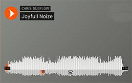 CHRIS DUBFLOW - JOYFULL NOIZE