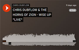 "CHRIS DUBFLOW & THE HORNS OF ZION - WISE UP ""LIVE"""